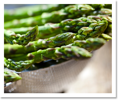 Michigans Asparagus Experts